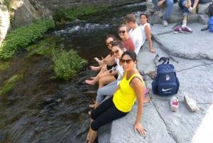 From Catania: Mount Etna and Alcantara River Tour