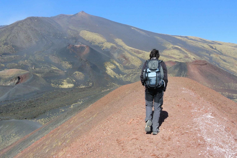 From Catania: Mount Etna Trekking Experience