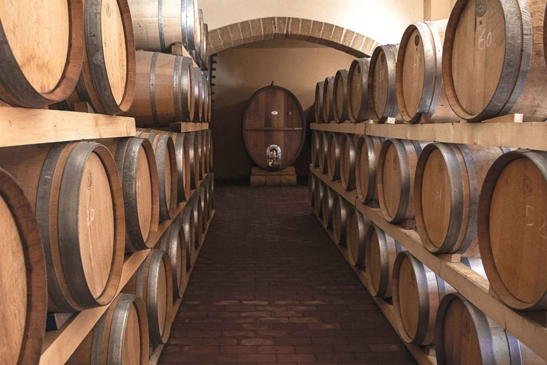 From Palermo: Private Tour & Sicilian Wine Tasting