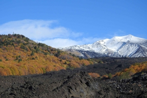 From Taormina & Catania: Guided Mount Etna Summit Base Hike