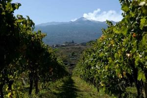 From Taormina: Full-Day Etna & Wine Tour