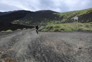 From Taormina: Half-Day Mount Etna Mountain Bike Tour