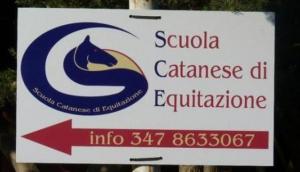 Horse Riding School C.E.C