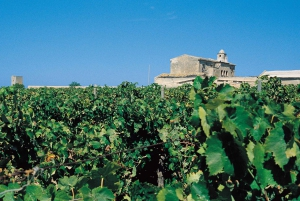 Marsala: Winery Tour with Wine Tasting and Local Products