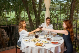 Mount Etna 5-Hour Food and Wine Tasting Tour