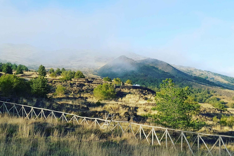 Mount Etna Half-Day Trekking Tour