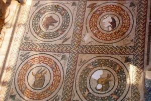 Piazza Armerina: Roman Villa del Casale Mosaics Tour