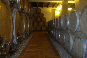 Private Full-Day West Sicily & Wine Tour from Palermo
