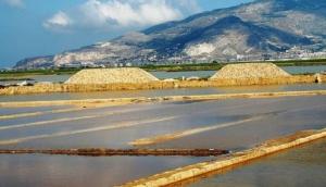 Riserve Naturali Saline di Trapani e Paceco