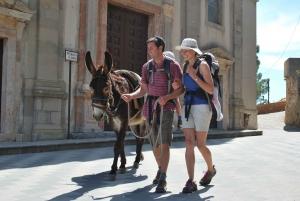 Savoca: Half-Day Donkey Riding and Godfather Tour