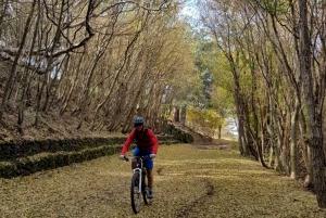 Taormina: Full Circuit of Mount Etna by Mountain Bike