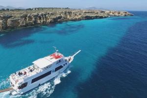 Trapani: Favignana Island Round-Trip Boat Shuttle