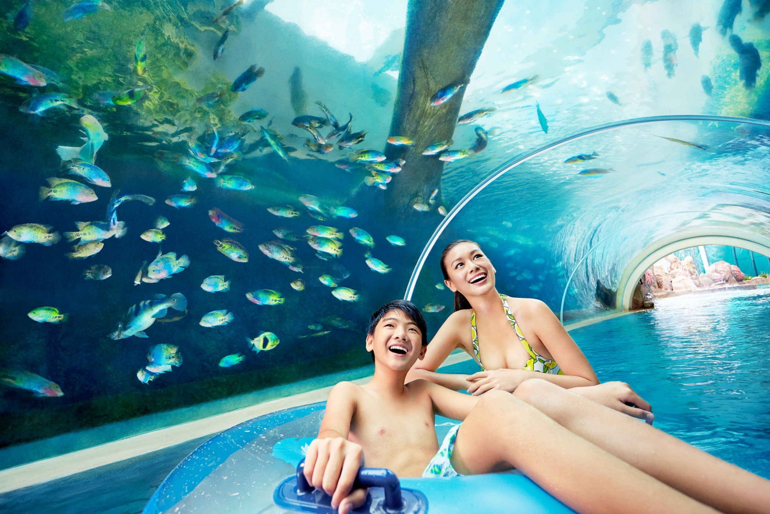 Adventure Cove Waterpark Fixed Dated Ticket