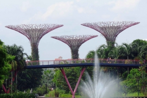 From Harbourfront Port: Private Customizable Singapore Tour