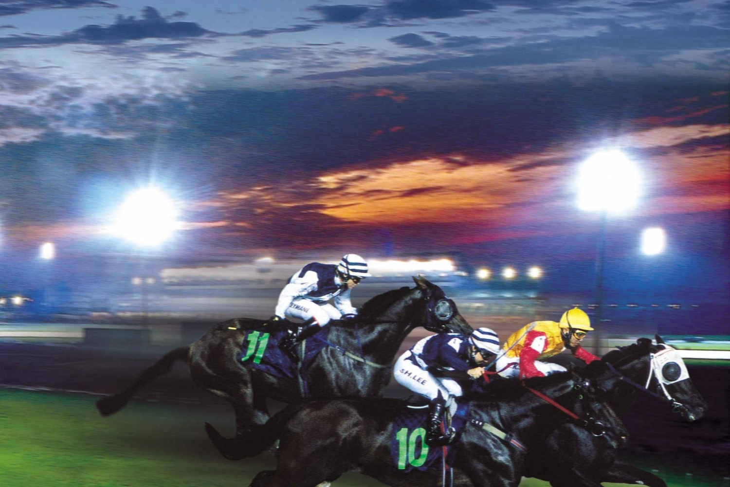 Go Racing: Singapore Turf Club Horse Racing