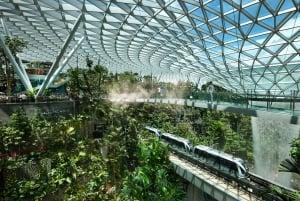 Jewel Changi Airport: Canopy Bridge Admission Ticket