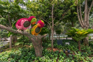 Jewel Changi Airport: Hedge Maze and Canopy Park Ticket