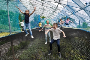 Jewel Changi Airport: Manulife Sky Nets Admission Ticket
