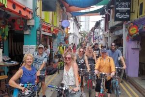 Lion City Highlights Bike Tour