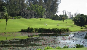 NS Resort & Country Club Executive Par 3 Course