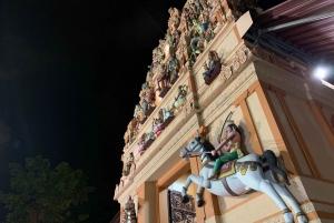 Serangoon Heartland Guided Tour with Dinner