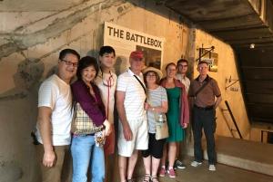 Singapore 2.5-Hour Walking Tour: Graves, Guns & Battles