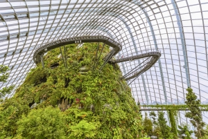 Singapore: Gardens by the Bay Admission E-Ticket