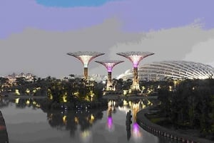 Singapore Gardens by the Bay: National Garden Day Tour