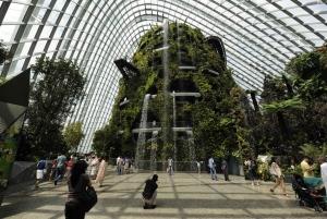 Singapore Gardens by the Bay: National Garden DayTour