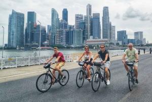 Singapore: Historical Bike Tour