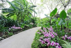 Singapore: National Orchid Garden Entry Tickets