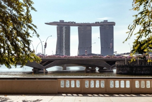 Singapore: Private Full-Day Best of Tour with a Local