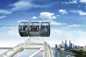 Singapore: Singapore Flyer Admission Ticket