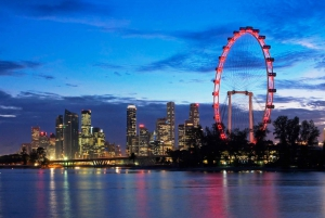 Singapore: Skip-the-line Singapore Flyer Dining Experience