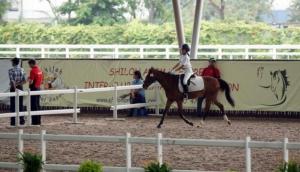 Singapore Turf Club Riding Centre