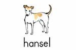 The hansel Shop