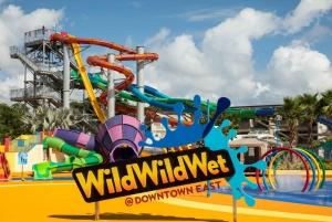 Wild Wild Wet Waterpark Admission Ticket