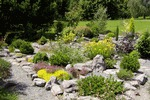 Arboretum Borová hora