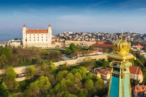 Bratislava: 2-Hour City Walking Tour with Castle Ticket