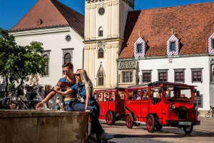 Bratislava: Sightseeing Bus Tour with Castle Admission