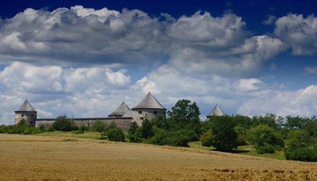 Fort Bzovík