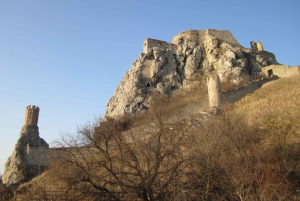 From Bratislava: Devin Castle 3-Hour Private Guided Tour