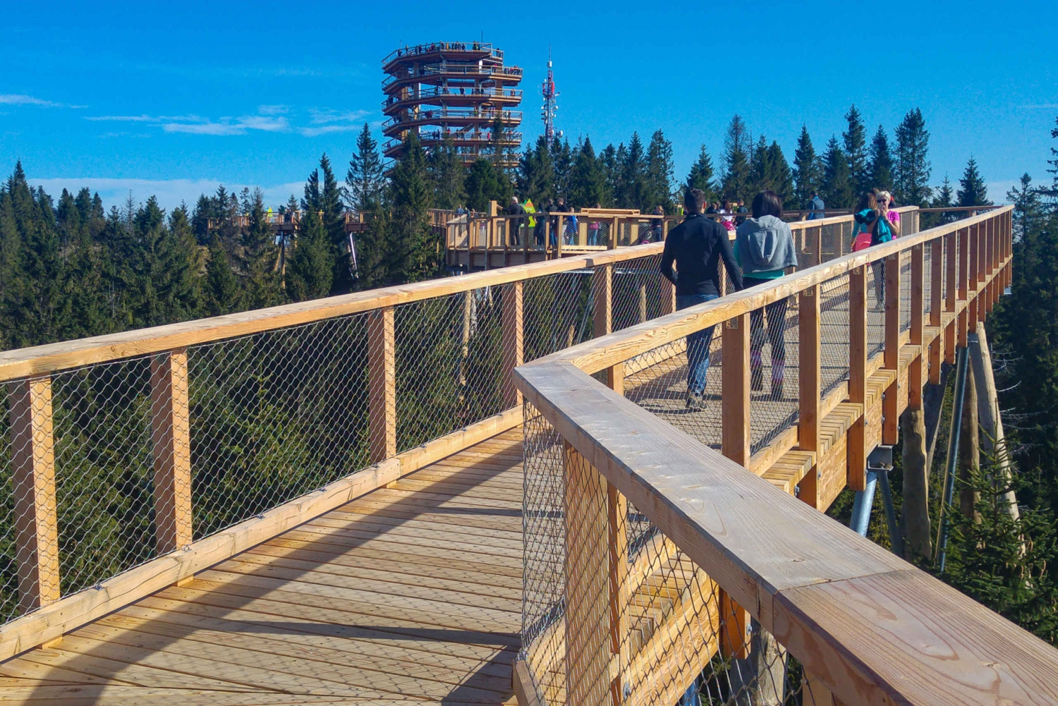 From Krakow: Slovakia Treetop Walk, Zakopane & Thermal Spa