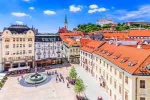 From Vienna: 6-Hour Bratislava Sightseeing Tour