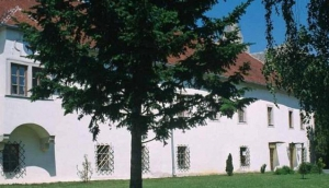 Mansion Ambrovec