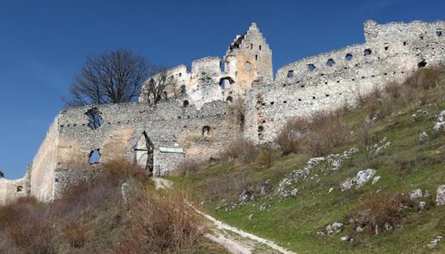 Topo??any Castle