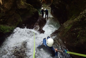 Bled: 3-Hour Exclusive Lake Bled Canyoning Adventure