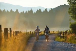 Bled: All-Inclusive E-bike Tour