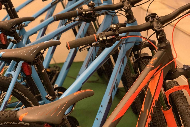 Bled: Mountain Bike Rental