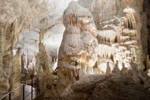 Bled or Ljubljana: Postojna Cave & Predjama Castle Half-Day